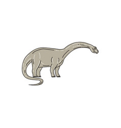 brontosaurus dinosaur looking down mono line vector image vector image