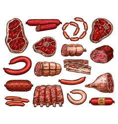 fresh meat and sausage sketch for food design vector image