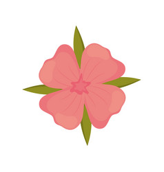 geranium flower decoration image vector image vector image