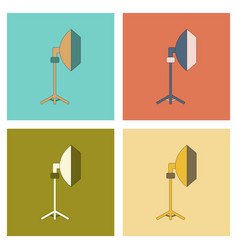 Assembly flat icon professional lighting vector