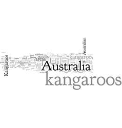 Australia kangaroos vector