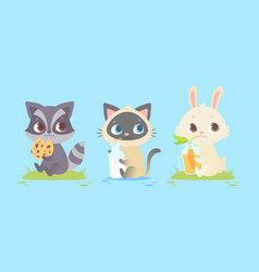 cute baby animals baby raccoon kitten bunny vector image