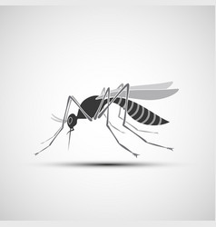 Mosquito icon with stinger isolated on white vector
