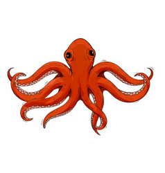 red octopus hand drawn sketch vector image
