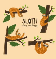 set cute funny sloth hanging on the tree sleepy vector image