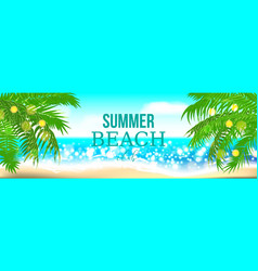 Summer time club seashore palm landscape vector