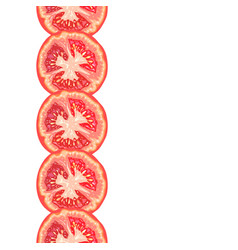 seamless decorative border of juicy tomato slice vector image