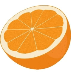 Orange cut in half Citrus isolated on white vector image