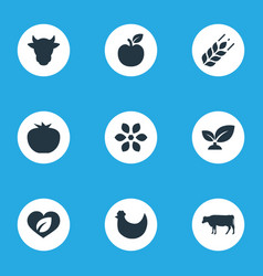 set of simple icons elements dairy vegetables vector image