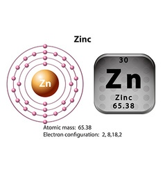 Symbol and electron diagram for Zinc vector