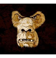 grunge gorilla face vector image