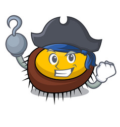 pirate sea urchin character cartoon vector image