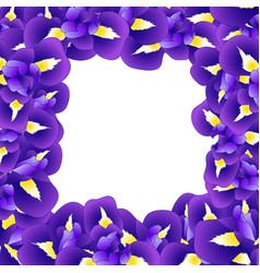 purple iris flower border vector image