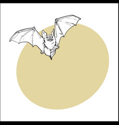 scary flying halloween vampire bat isolated vector image