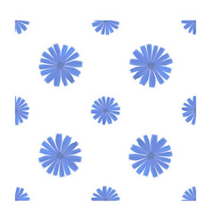 seamless pattern with chicory flower vector image
