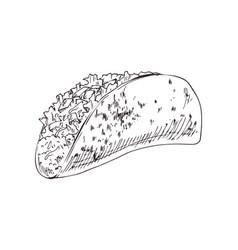 taco burrito monochrome sketch vector image