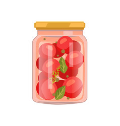 Tomatoes with gerbs preserved food in glass jar vector