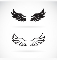 wing design on white background wing icon or logo vector image
