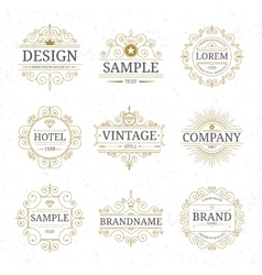 Set of vintage luxury logo templates vector image vector image