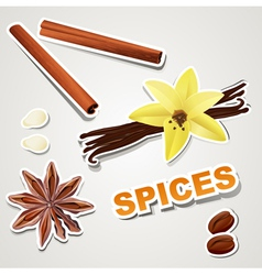 set stikers spice vector image