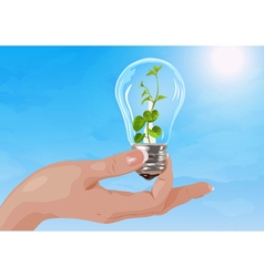 Woman hand holding light bulb with plant vector image