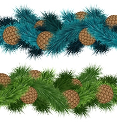 Conifers cones in pine branches vector image