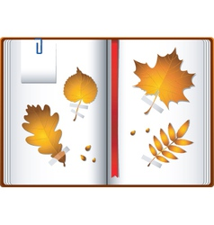 autumn notebook vector image