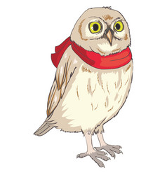 flying owl vector image