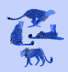 Graphic collection of cheetahs drawn with rough vector