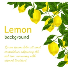 Lemon background poster vector