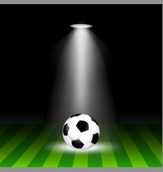 the ball is on the field with lighting vector image