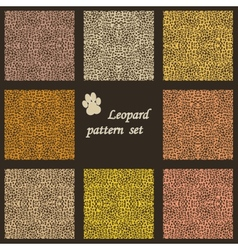 Set of leopard backgrounds vector