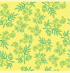 mimosa branches seamless pattern cartoon and vector image