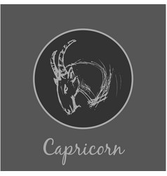 capricorn astrological zodiac symbol horoscope vector image