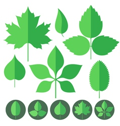 Leaf Icon Set vector image
