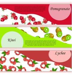 Pomegranate or garnet label vector