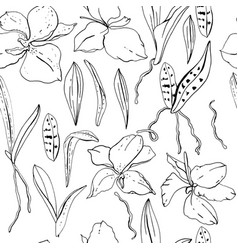 Seamless floral pattern with romantic orchid vector
