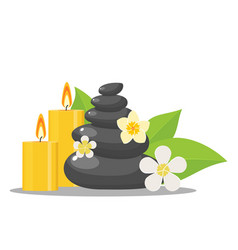 zen stones and flowers vector image