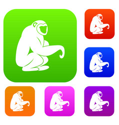 monkey sitting set color collection vector image vector image