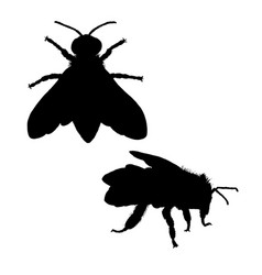 bee silhouette black white icon vector image