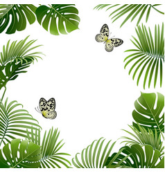 banner tropical plants and butterflies vector image