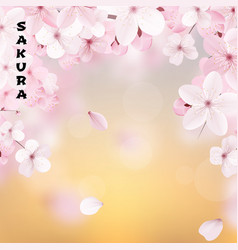 beautiful delicate background with blossoming vector image