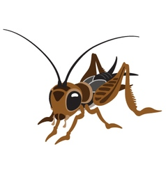 Cartoon cricket vector