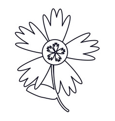 Flower spring decoration outline vector