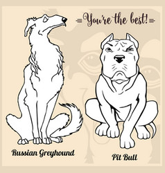 Pit bull and russian greyhound - set with dog vector