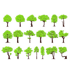 Set of trees vector