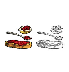 spoon and slice of bread with jam vintage vector image
