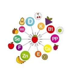 vitamins and supplements design vector image