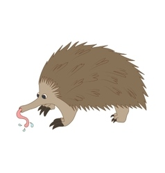 Anteater icon cartoon style vector image