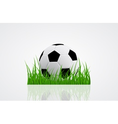 ball on grass 2 vector image vector image